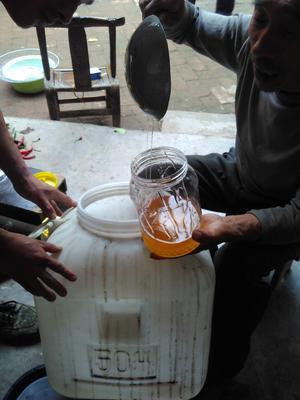 河南省三门峡市渑池县百花蜜 塑料瓶装 98% 2年以上