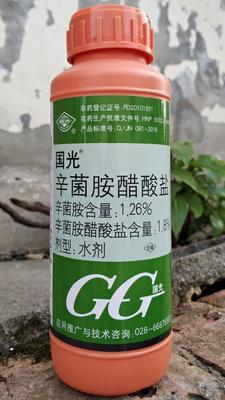 湖南省岳阳市华容县国光辛菌胺醋酸盐杀菌 水剂 瓶装