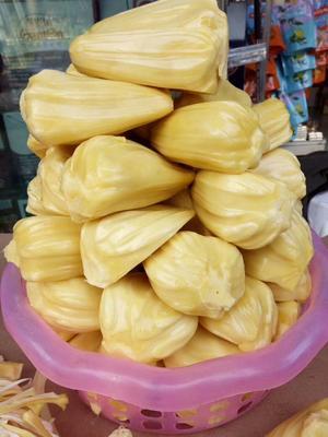 海南省三亚市海棠区泰国菠萝蜜 10斤以下