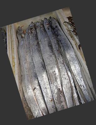 上海松江区东海带鱼 野生 0.5龙8国际官网官方网站以下
