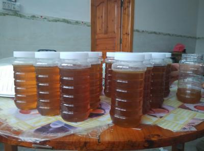 广西壮族自治区贵港市桂平市土蜂蜜 塑料瓶装 98% 2年以上