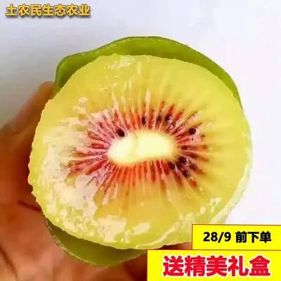 湖南省湘西土家族苗族自治州凤凰县红心猕猴桃 60~100克