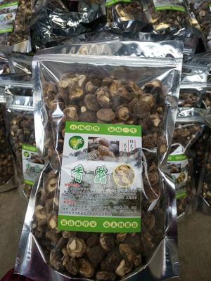 云南省昆明市官渡区香菇丁 袋装 1年以上