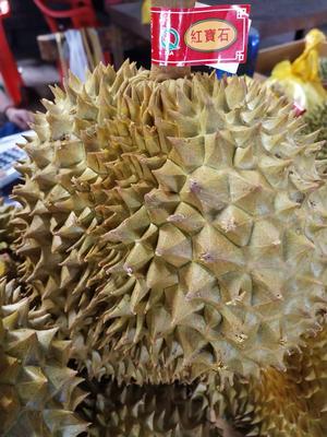 广西壮族自治区南宁市西乡塘区金枕头榴莲 90%以上 3 - 4公斤