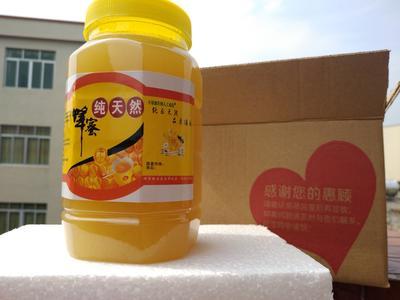 广东省云浮市罗定市土蜂蜜 塑料瓶装 98% 2年