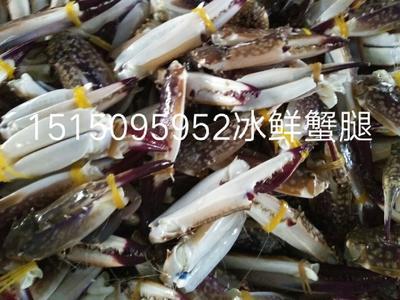 江苏省连云港市赣榆区蟹钳