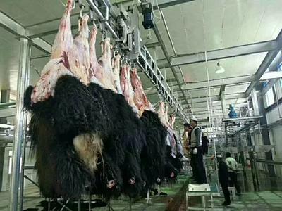 四川省阿坝藏族羌族自治州松潘县牛肉干 6-12个月