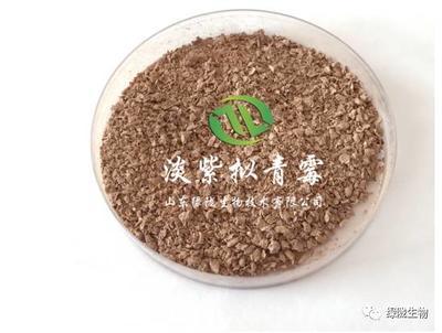 山东省潍坊市诸城市生物杀线剂淡紫拟青霉