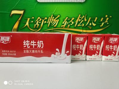 广东省广州市白云区牛奶 3-6个月 阴凉干燥处