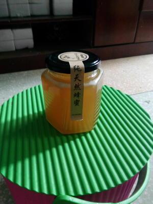 云南省临沧市云县蜂蜜酵素 玻璃瓶装 100% 1年