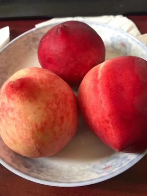 广西壮族自治区桂林市七星区水蜜桃 55mm以上 3 - 4两