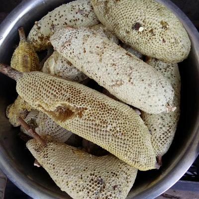 云南省普洱市景谷傣族彝族自治县野生蜂蜜 桶装 100% 2年以上