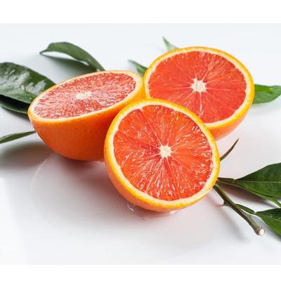 这是一张关于卡拉卡拉红肉脐橙苗 嫁接苗 0.5~1米的产品图片