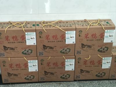 安徽省阜阳市颍上县麻鸭蛋 食用 礼盒装