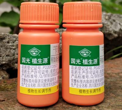 湖南省岳阳市华容县国光植生源苄氨基嘌呤 水剂 瓶装