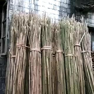 江西省景德镇市乐平市菜架竹