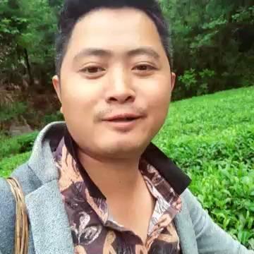 湖南省湘西土家族苗族自治州古丈县茶青 散装 二级