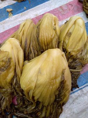 广西壮族自治区玉林市玉州区酸菜