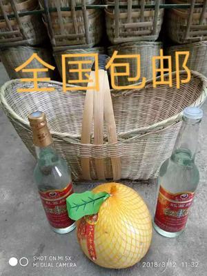 广西壮族自治区玉林市兴业县竹蓝