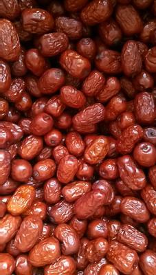 山东省德州市乐陵市新疆若羌红枣厂家供应 三级