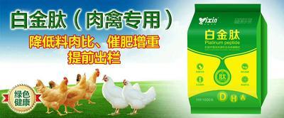 这是一张关于肉禽催肥专用的产品图片