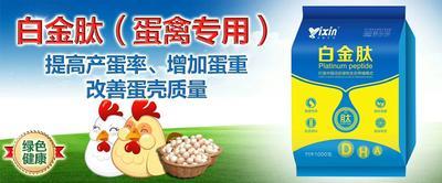 这是一张关于蛋禽增蛋添加剂的产品图片