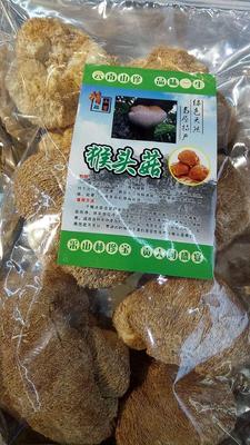 云南省昆明市官渡区野生干猴头菇 袋装 1年以上