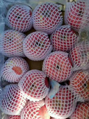 这是一张关于红富士苹果 纸袋 条红 70mm以上的产品图片