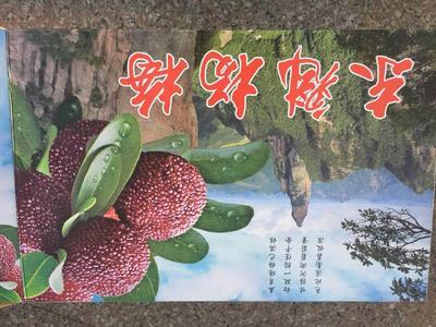 云南省红河哈尼族彝族自治州石屏县东魁杨梅 2 - 2.5cm
