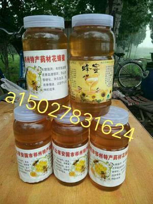 河北省保定市安国市槐花蜜 塑料瓶装 100% 2年以上