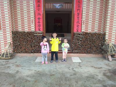 广西壮族自治区贵港市桂平市肉桂