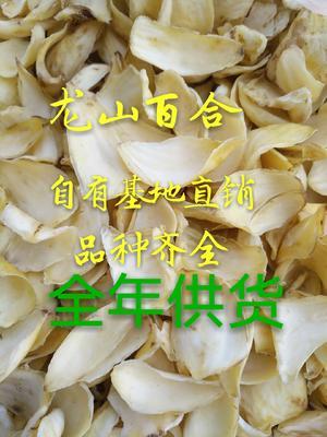 湖南省湘西土家族苗族自治州龙山县龙山百合干 1年以上 特级