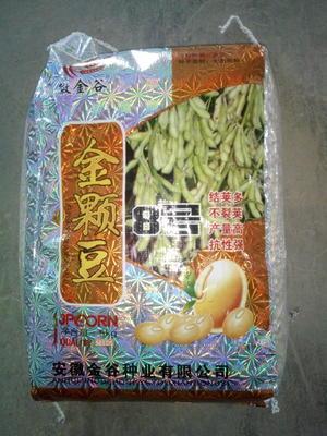 江苏省徐州市沛县黄豆种子