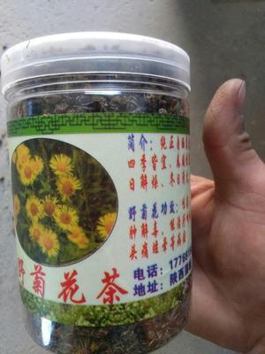 陕西省渭南市蒲城县菊花茶 罐装 一级