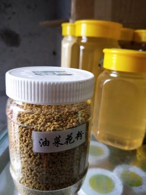 四川省德阳市中江县油菜花粉 24个月以上