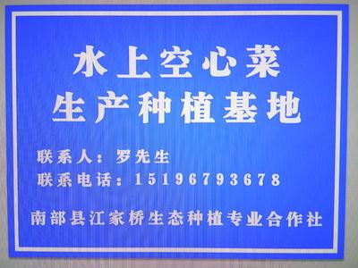 四川省南充市南部县竹叶空心菜 30 ~ 35cm