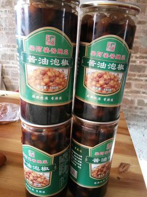 广西壮族自治区玉林市容县五彩泡椒 6-12个月