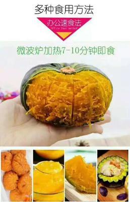 山东省济南市历下区贝贝南瓜 0.5~0.7斤 扁圆形