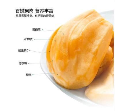 海南省文昌市文昌市泰国菠萝蜜 10斤以下