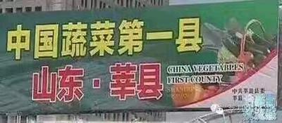 山东省聊城市莘县盆栽韭菜 头茬 40~45cm