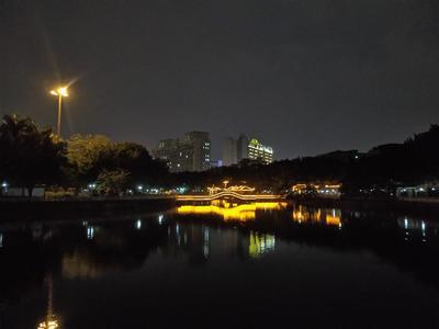 广东省广州市白云区粽叶