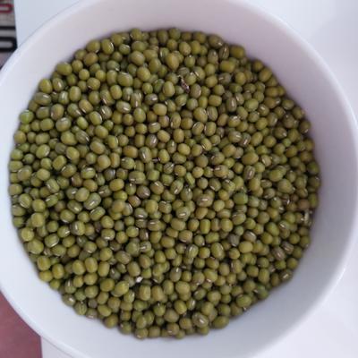 内蒙古自治区赤峰市翁牛特旗绿豆 生大豆 1等品
