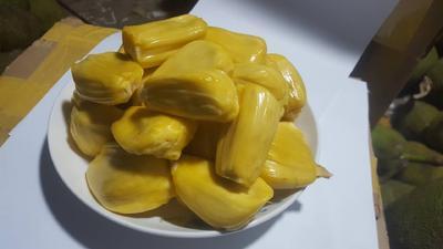 云南省昆明市官渡区泰国菠萝蜜 15斤以上