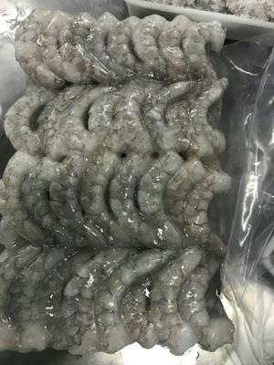 广东省汕头市潮阳区南美白对虾 人工殖养 3-5钱