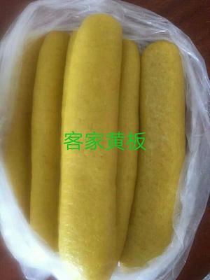 广东省梅州市兴宁市黄粄 2-3个月