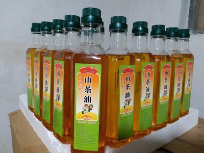 广西壮族自治区玉林市博白县压榨一级山茶油 500ml