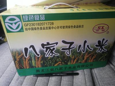 黑龙江省哈尔滨市双城市有机富硒小米