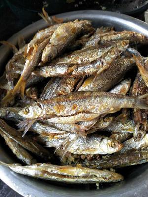 陕西省安康市汉滨区鱼干类