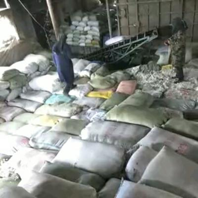 这是一张关于棉籽的产品图片