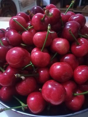 这是一张关于美早樱桃 22-24mm 8-12g的产品图片